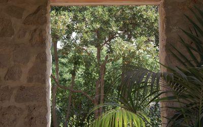Espacio verde exterior en Santa Bárbara